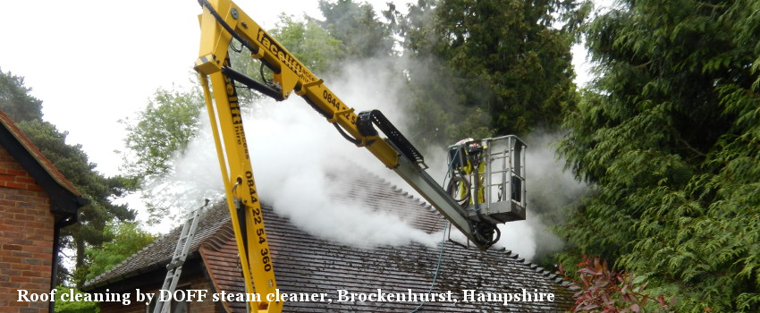 Roof cleaning by DOFF steam cleaner, Brockenhurst, Hampshire